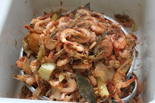 Mmmm... shrimp!